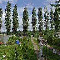 Visite des jardins familiaux