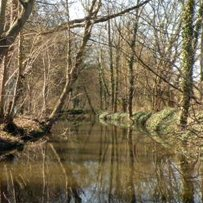 Entretien de la Thève et création d'un chemin d'accès sur la rive gauche du cours d'eau