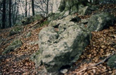 La pierre tournante de Coye